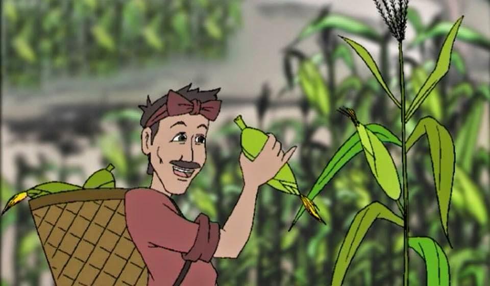 Chuyện người trồng ngô