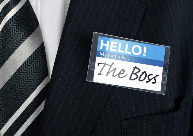 Like a boss: Study reveals common characteristics of senior management