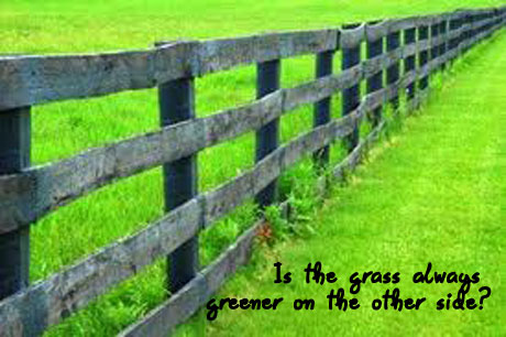 The grass is always greener on the other side...